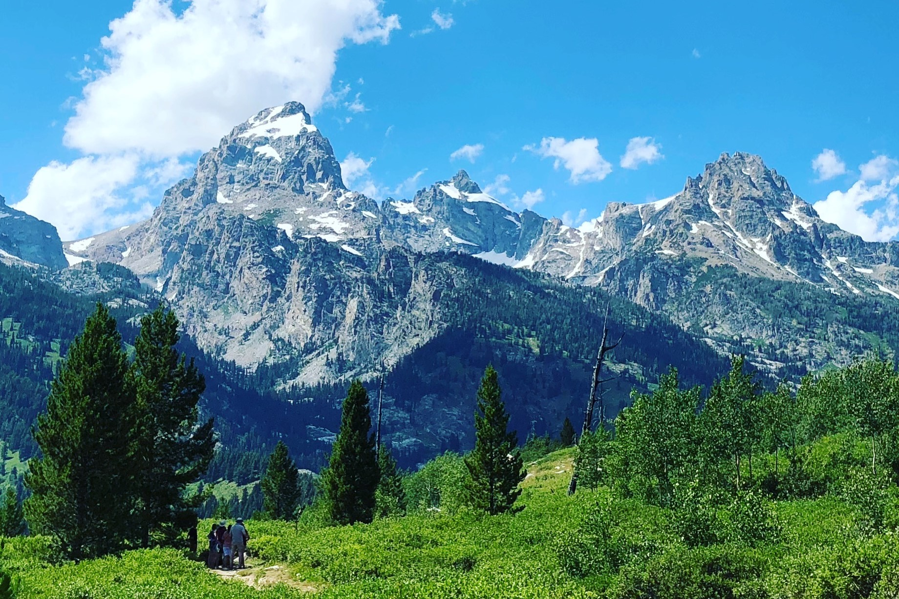 A trail, surrounded by green shrubs and trees, under the Tetons on a sunny day